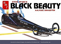 AMT Black Beauty