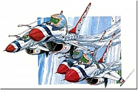 Diamonds and Thrust, T-birds F-16-960