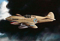 Curtiss P-40K Warhawk by Mike Machat-960