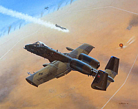 Fairchild A-10 Thunderbolt II-960